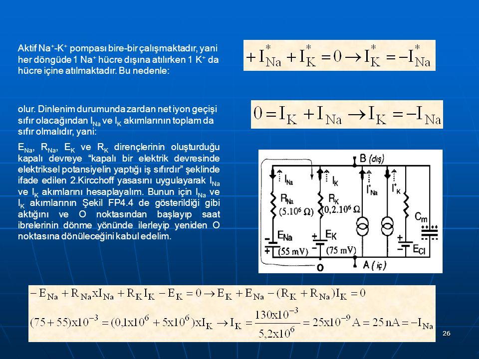 Aktif Na+-K+ pompası bire-bir çalışmaktadır, yani her döngüde 1 Na+ hücre dışına atılırken 1 K+ da hücre içine atılmaktadır. Bu nedenle: