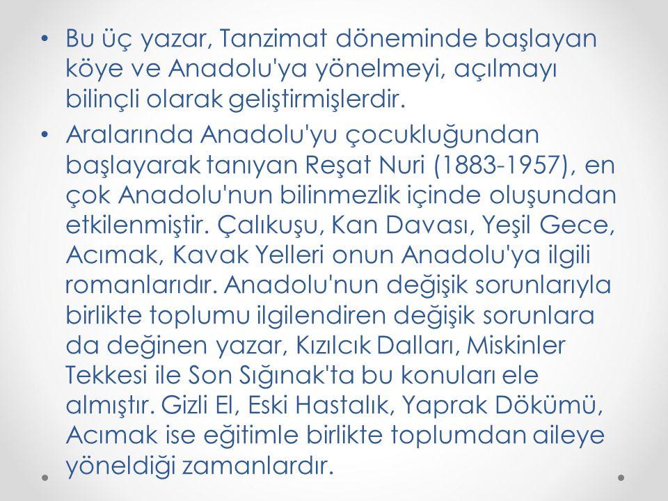 Bu üç yazar, Tanzimat döneminde başlayan köye ve Anadolu ya yönelmeyi, açılmayı bilinçli olarak geliştirmişlerdir.
