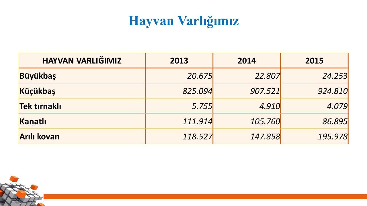 Hayvan Varlığımız HAYVAN VARLIĞIMIZ 2013 2014 2015 Büyükbaş 20.675