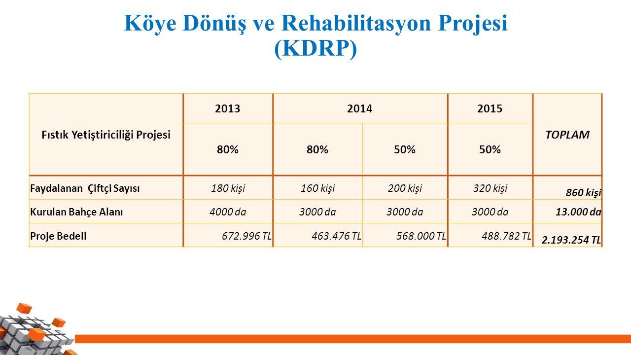Köye Dönüş ve Rehabilitasyon Projesi (KDRP)