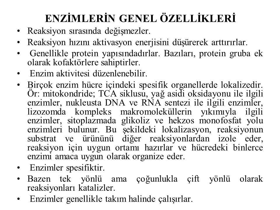 ENZİMLERİN GENEL ÖZELLİKLERİ