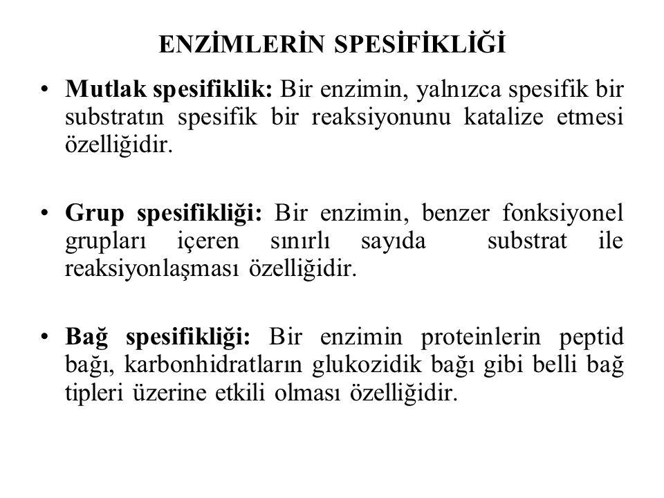 ENZİMLERİN SPESİFİKLİĞİ