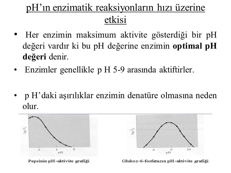 pH'ın enzimatik reaksiyonların hızı üzerine etkisi