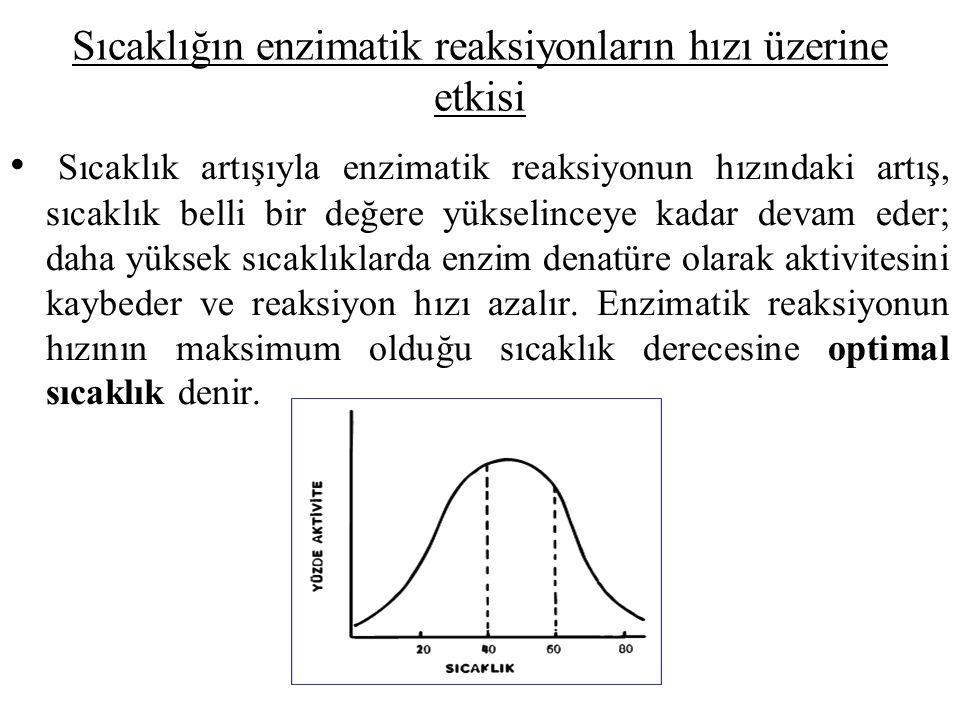 Sıcaklığın enzimatik reaksiyonların hızı üzerine etkisi