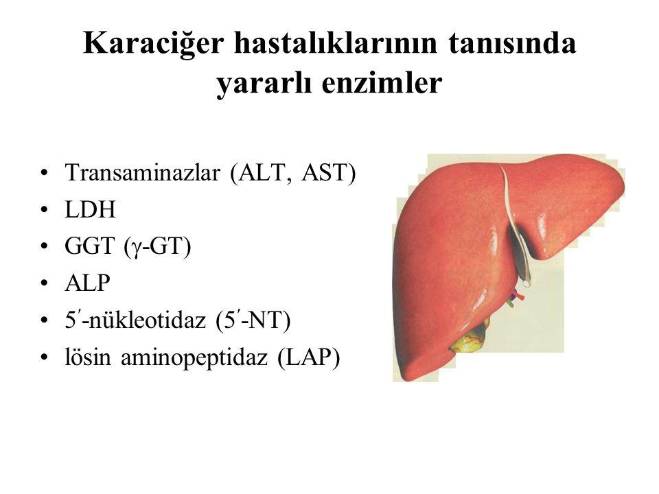 Karaciğer hastalıklarının tanısında yararlı enzimler