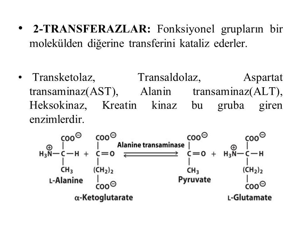 2-TRANSFERAZLAR: Fonksiyonel grupların bir molekülden diğerine transferini kataliz ederler.