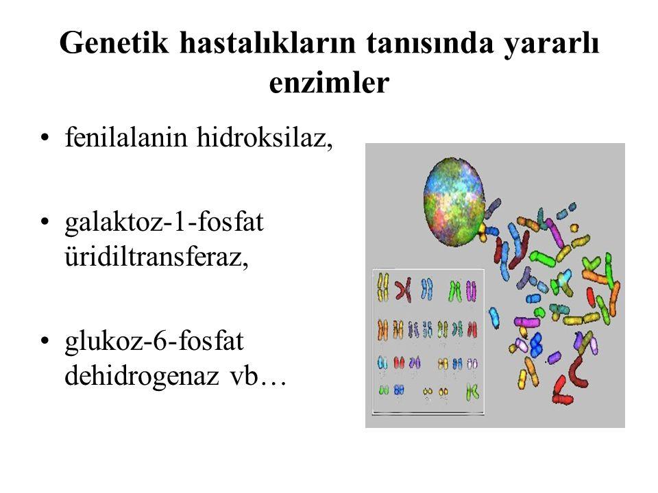 Genetik hastalıkların tanısında yararlı enzimler