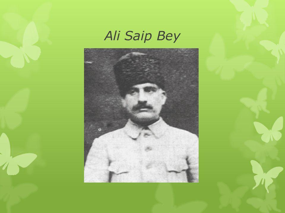 Ali Saip Bey