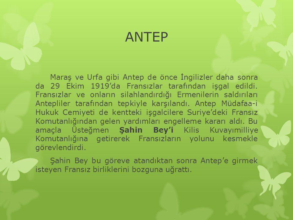 ANTEP