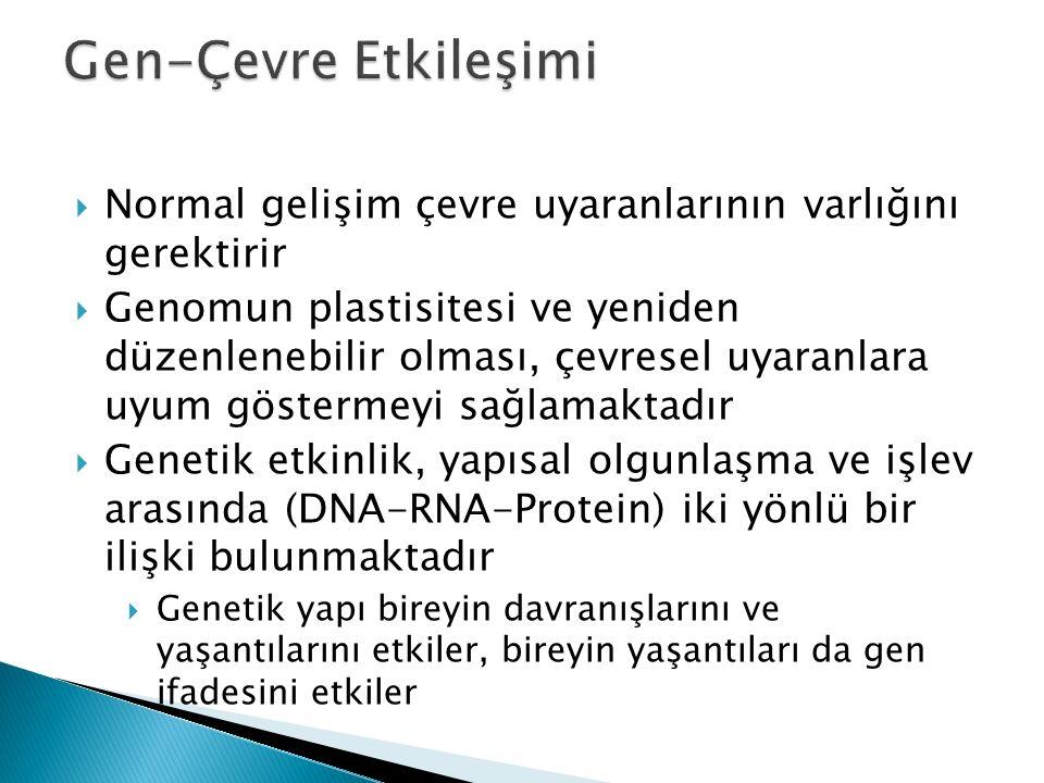 Gen-Çevre Etkileşimi Normal gelişim çevre uyaranlarının varlığını gerektirir.
