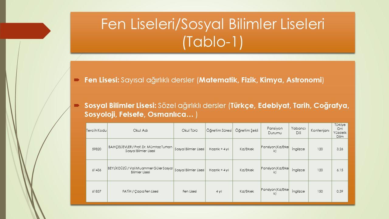Fen Liseleri/Sosyal Bilimler Liseleri (Tablo-1)