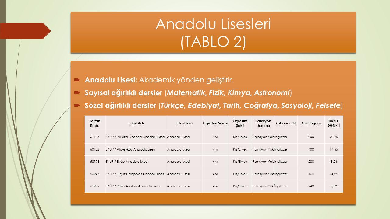Anadolu Lisesleri (TABLO 2)