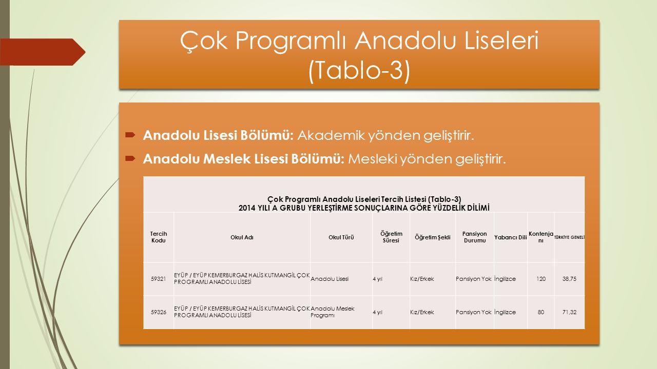 Çok Programlı Anadolu Liseleri (Tablo-3)