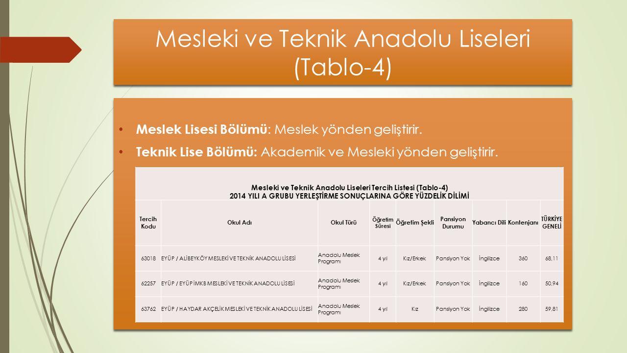 Mesleki ve Teknik Anadolu Liseleri (Tablo-4)
