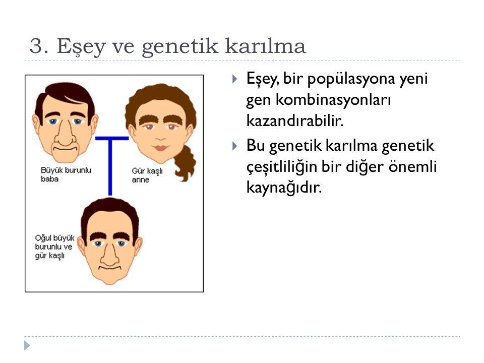 3. Eşey ve genetik karılma
