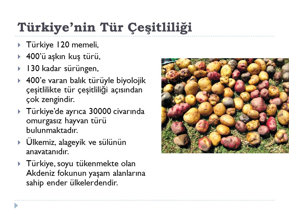 Türkiye'nin Tür Çeşitliliği