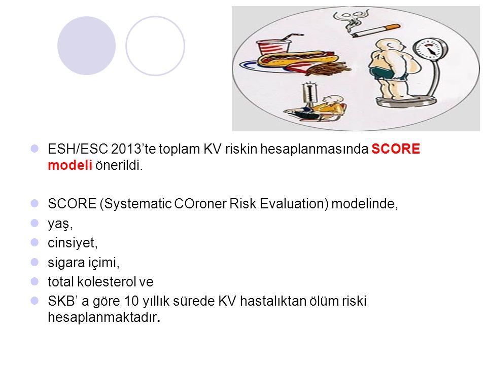 ESH/ESC 2013'te toplam KV riskin hesaplanmasında SCORE modeli önerildi.