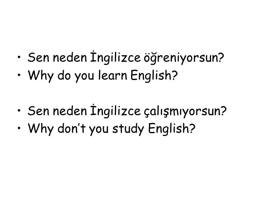 Sen neden İngilizce öğreniyorsun