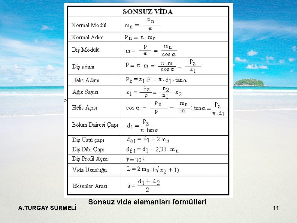 Sonsuz vida elemanları formülleri