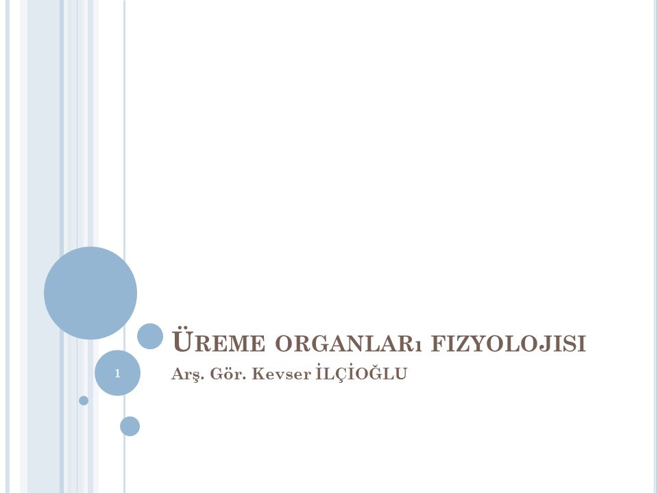 Üreme organları fizyolojisi