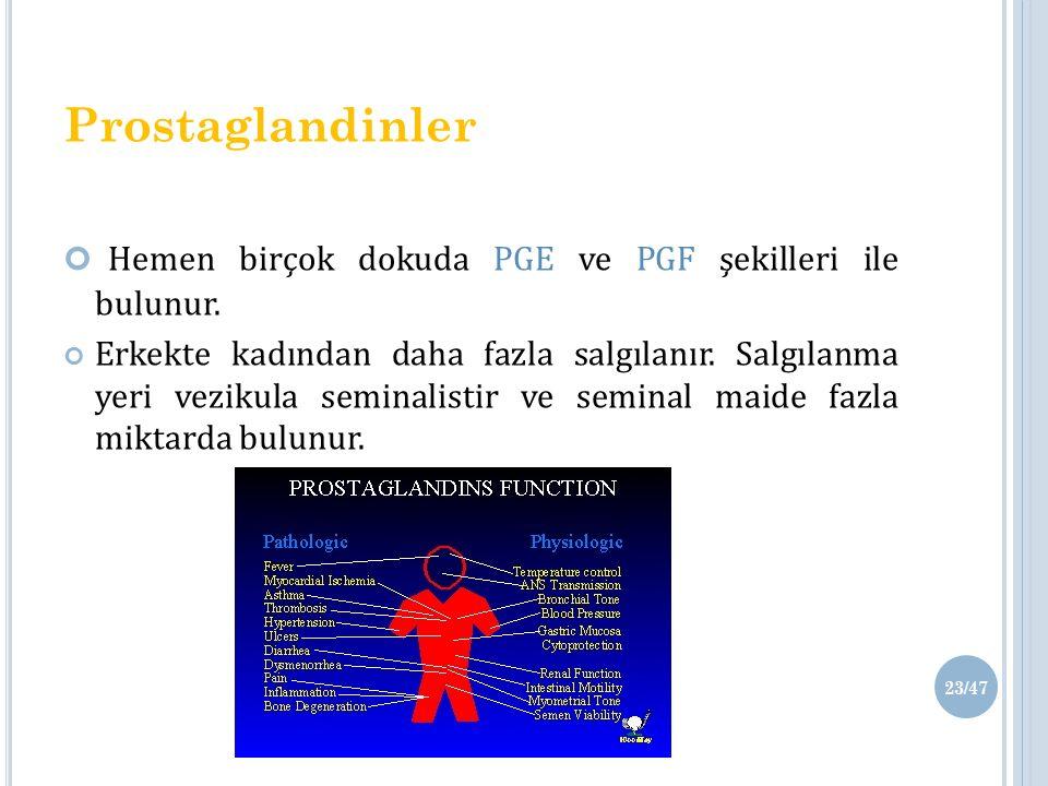 Hemen birçok dokuda PGE ve PGF şekilleri ile bulunur.