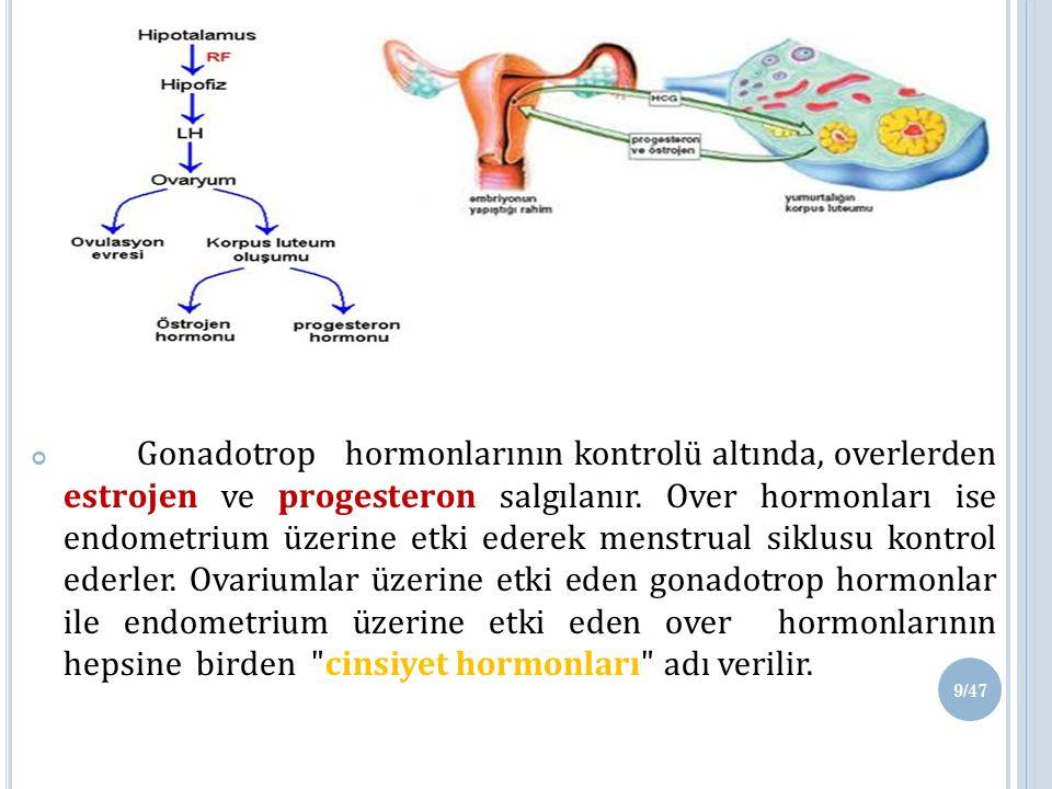 Gonadotrop hormonlarının kontrolü altında, overlerden estrojen ve progesteron salgılanır.