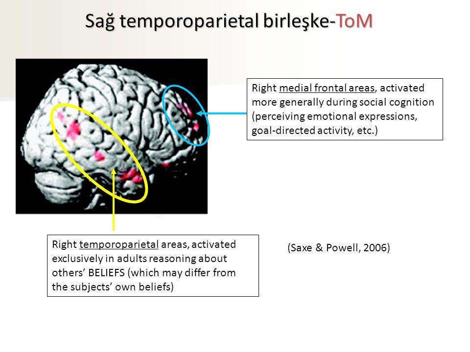 Sağ temporoparietal birleşke-ToM