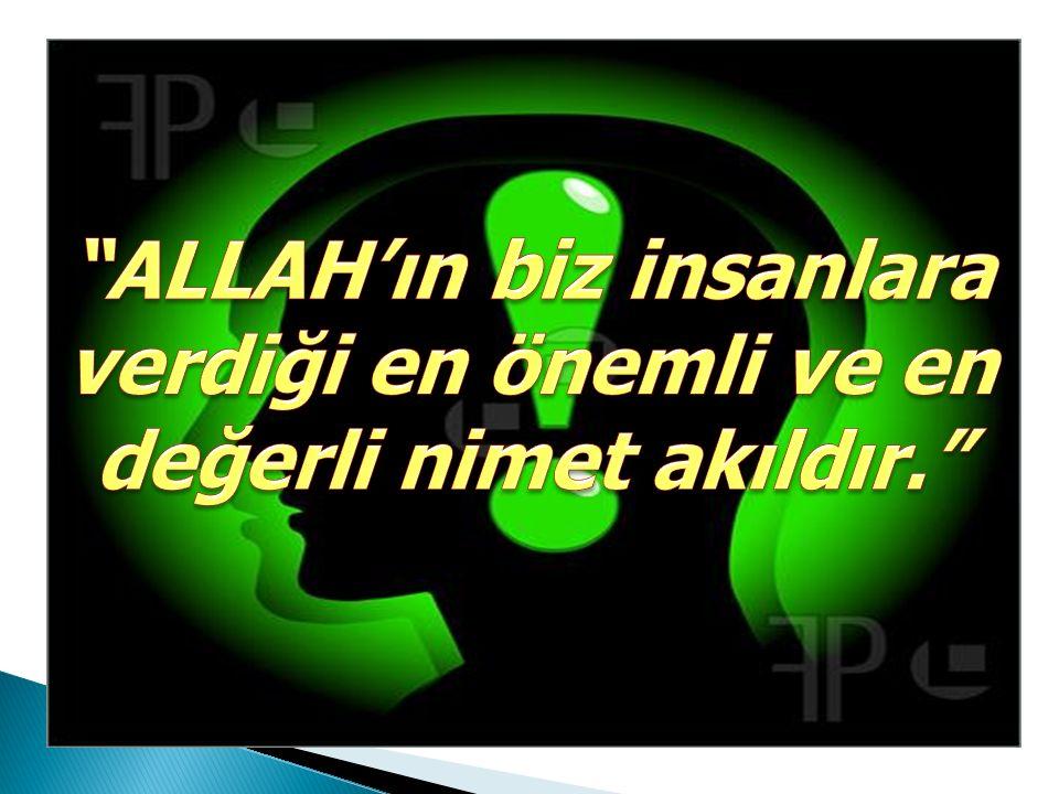 ALLAH'ın biz insanlara verdiği en önemli ve en değerli nimet akıldır