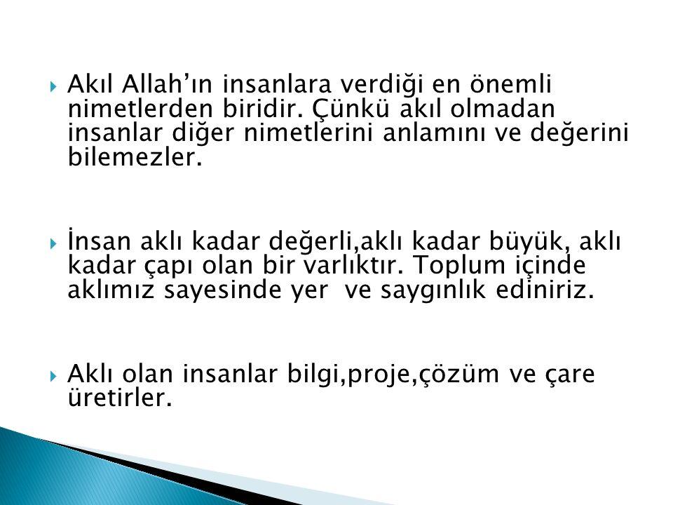 Akıl Allah'ın insanlara verdiği en önemli nimetlerden biridir