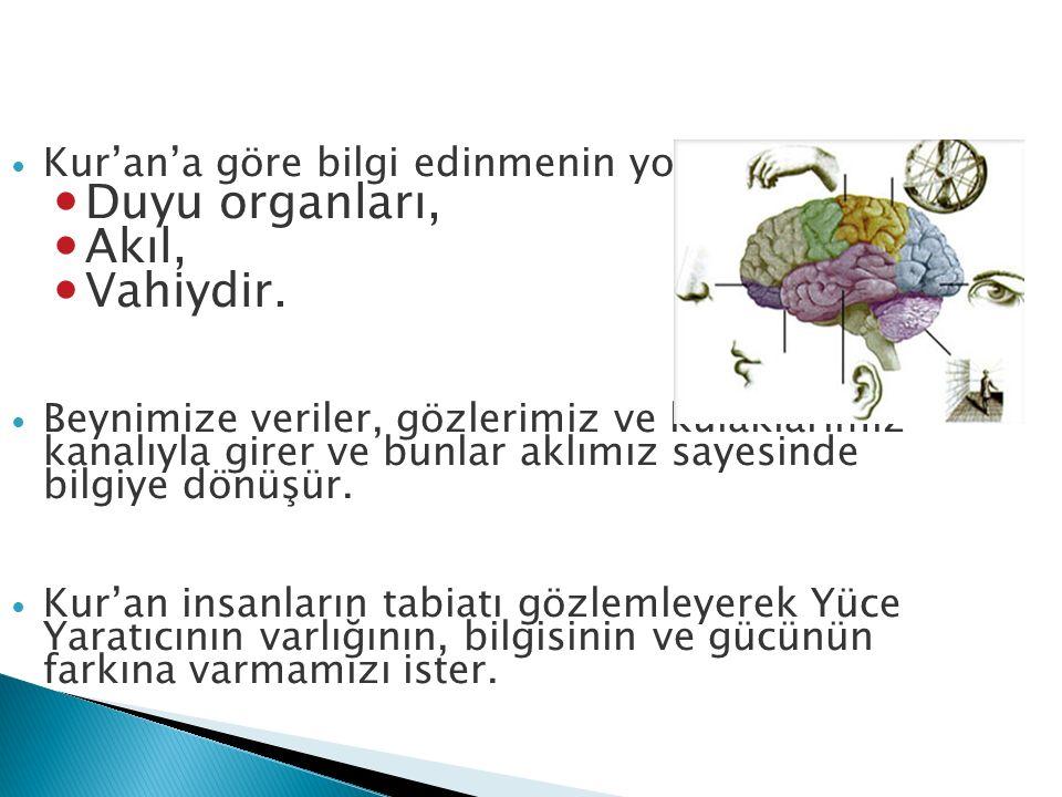 Duyu organları, Akıl, Vahiydir. Kur'an'a göre bilgi edinmenin yolları: