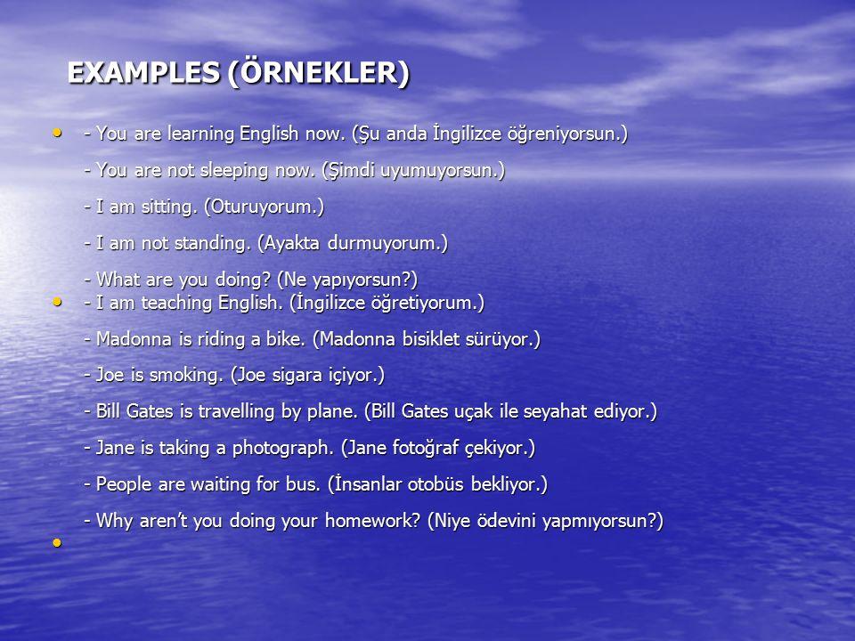 EXAMPLES (ÖRNEKLER)