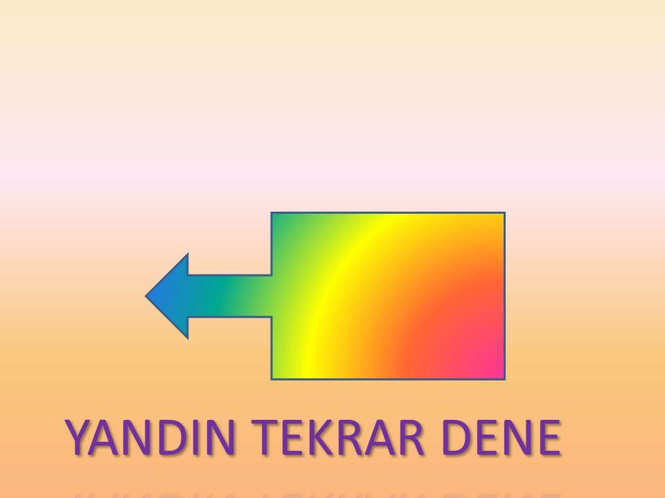 YANDIN TEKRAR DENE