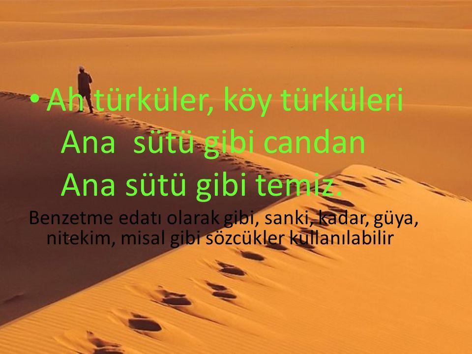 Ah türküler, köy türküleri Ana sütü gibi candan Ana sütü gibi temiz.