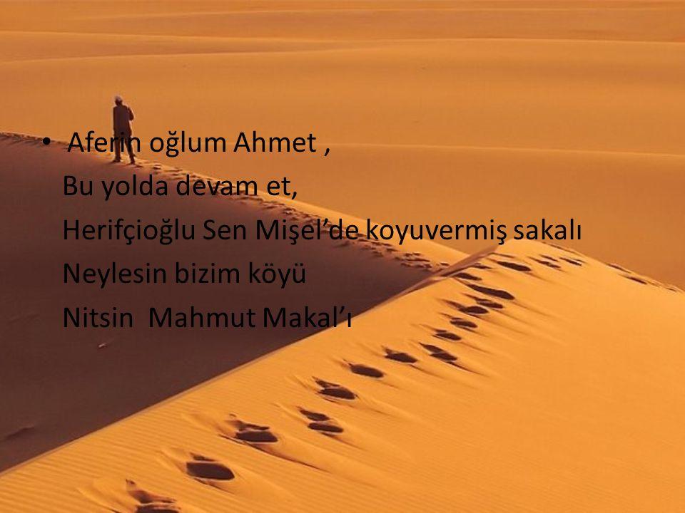 Aferin oğlum Ahmet , Bu yolda devam et, Herifçioğlu Sen Mişel'de koyuvermiş sakalı. Neylesin bizim köyü.