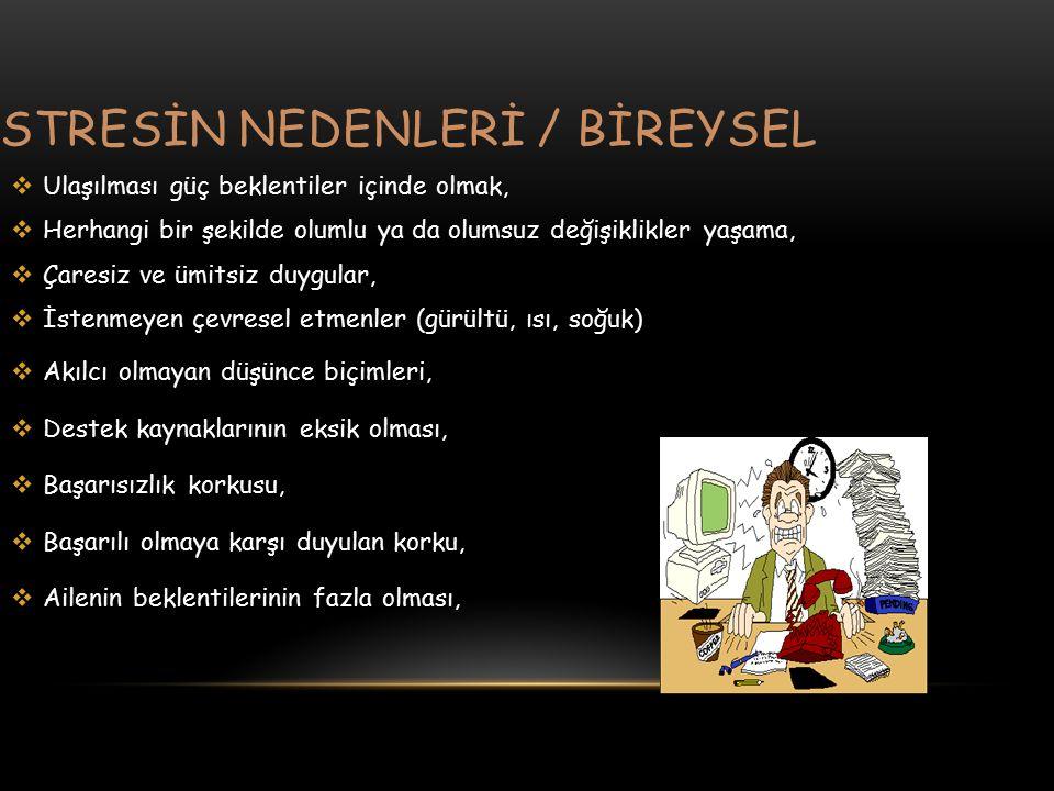STRESİN NEDENLERİ / BİREYSEL