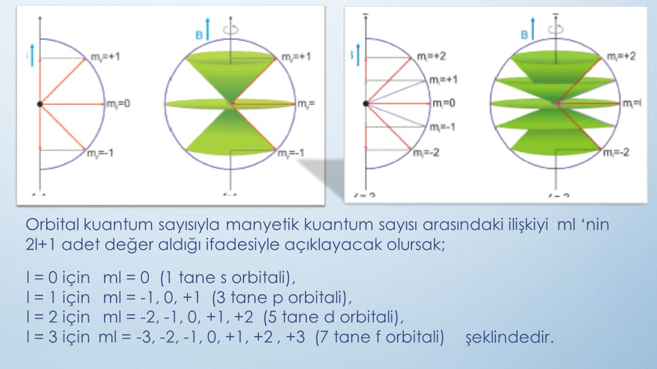 Orbital kuantum sayısıyla manyetik kuantum sayısı arasındaki ilişkiyi ml 'nin 2l+1 adet değer aldığı ifadesiyle açıklayacak olursak;