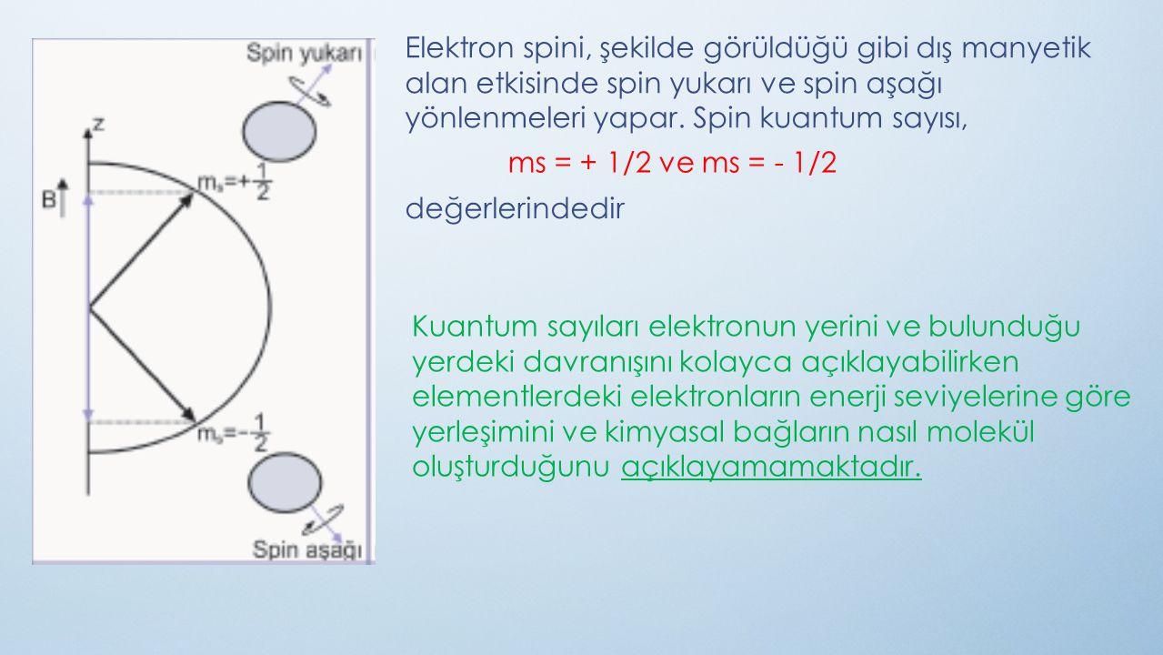 Elektron spini, şekilde görüldüğü gibi dış manyetik alan etkisinde spin yukarı ve spin aşağı yönlenmeleri yapar. Spin kuantum sayısı,