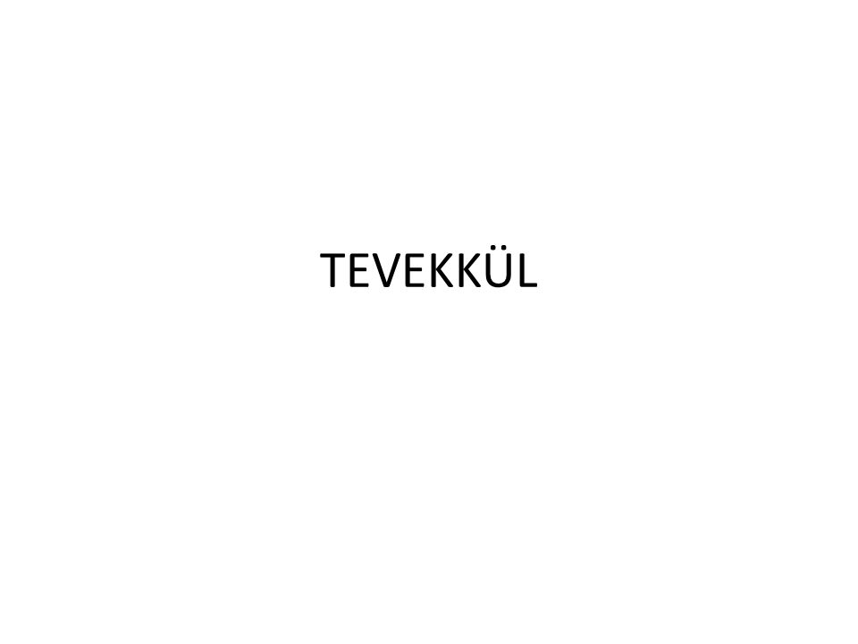 TEVEKKÜL
