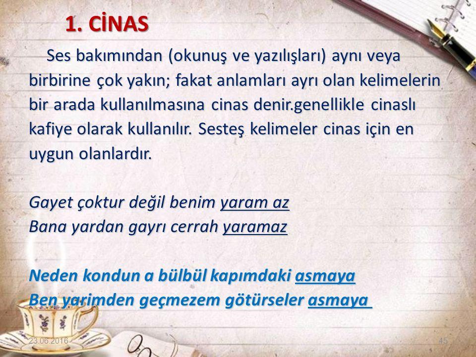 1. CİNAS