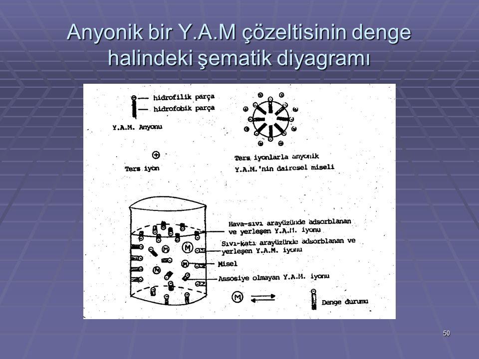 Anyonik bir Y.A.M çözeltisinin denge halindeki şematik diyagramı