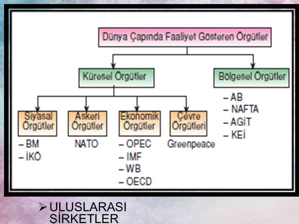 ULUSLARASI ŞİRKETLER