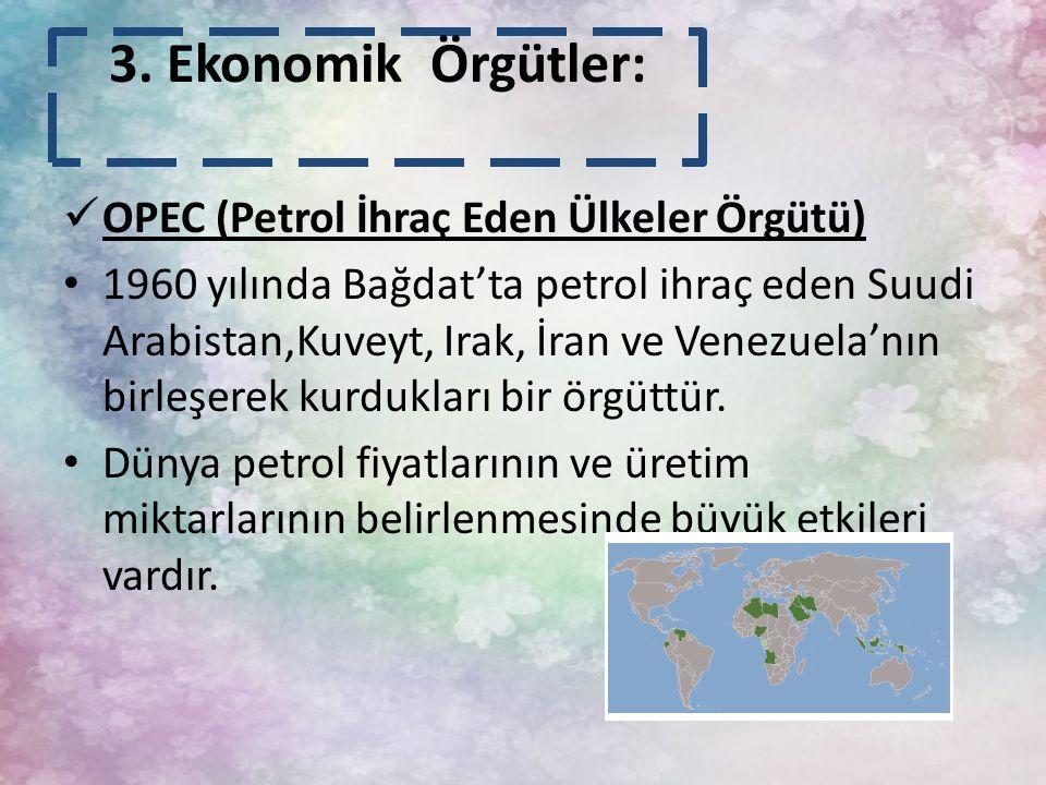 3. Ekonomik Örgütler: OPEC (Petrol İhraç Eden Ülkeler Örgütü)