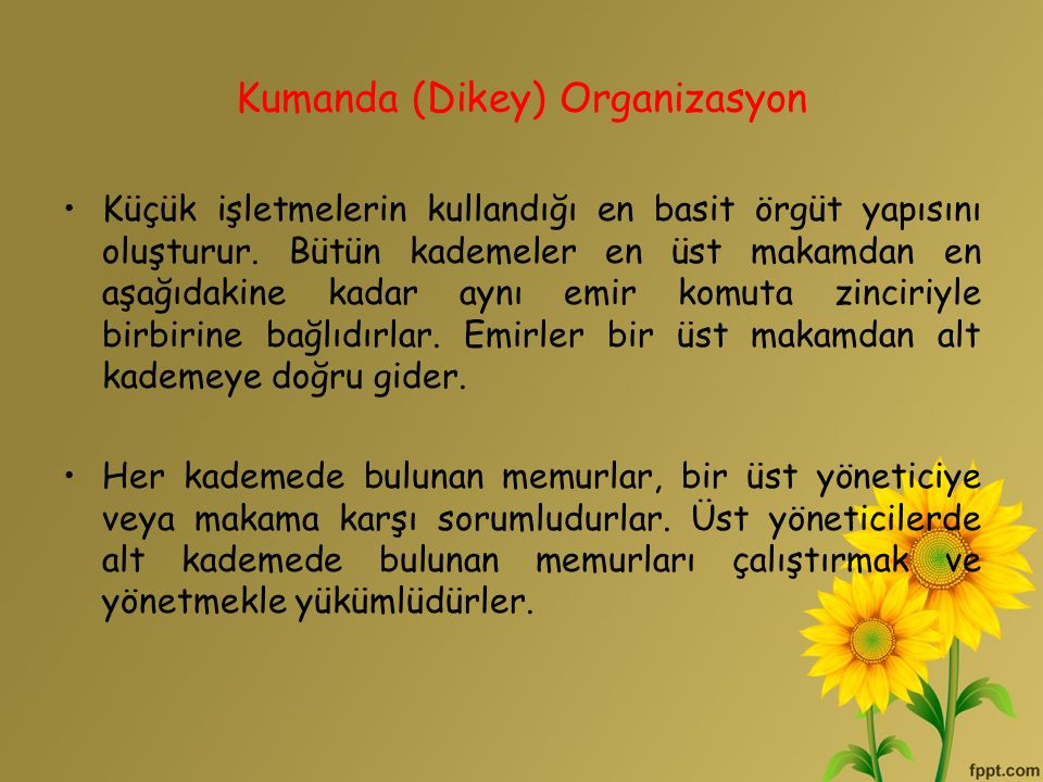 Kumanda (Dikey) Organizasyon