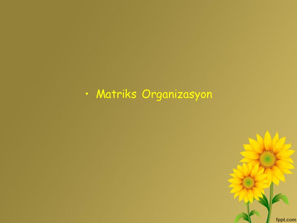 Matriks Organizasyon