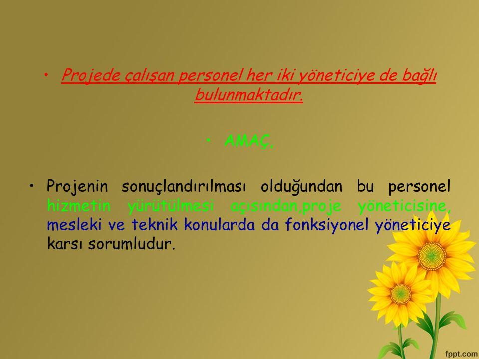 Projede çalışan personel her iki yöneticiye de bağlı bulunmaktadır.