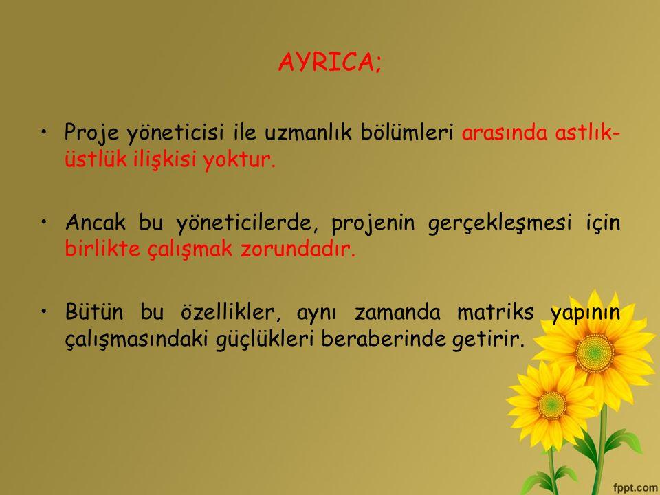 AYRICA; Proje yöneticisi ile uzmanlık bölümleri arasında astlık-üstlük ilişkisi yoktur.