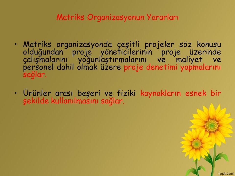 Matriks Organizasyonun Yararları