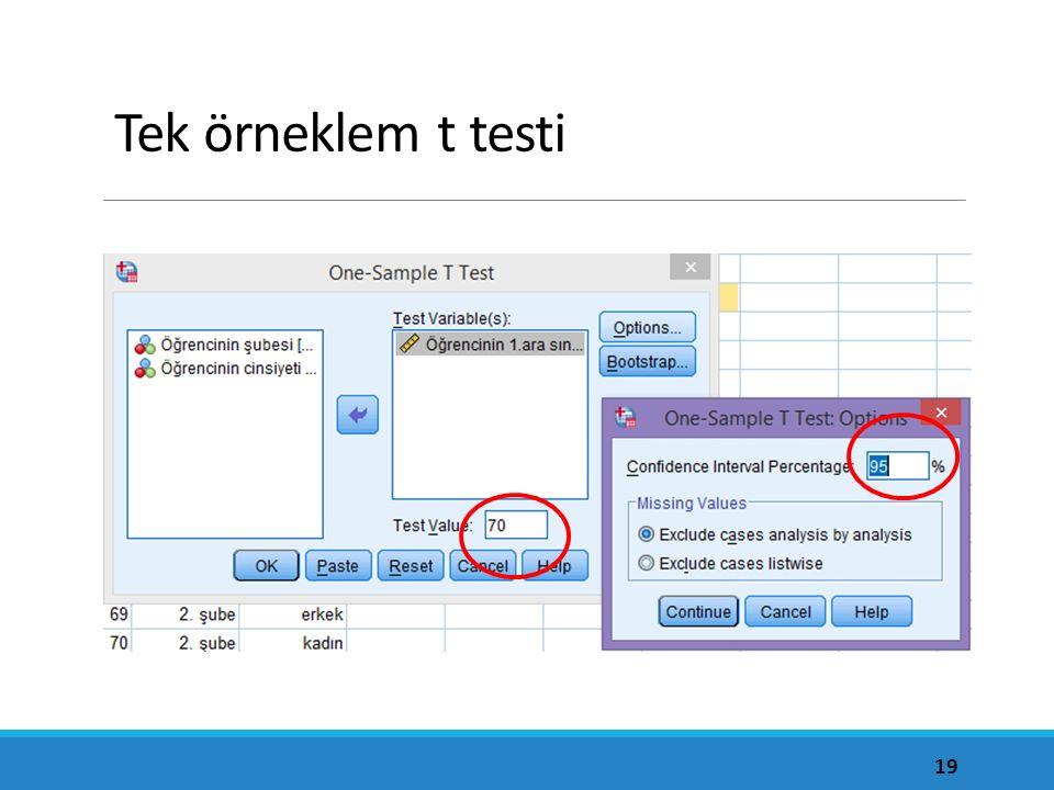 Tek örneklem t testi %95'in anlamı ne