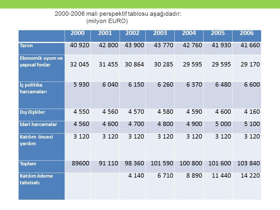 2000-2006 mali perspektif tablosu aşağıdadır: