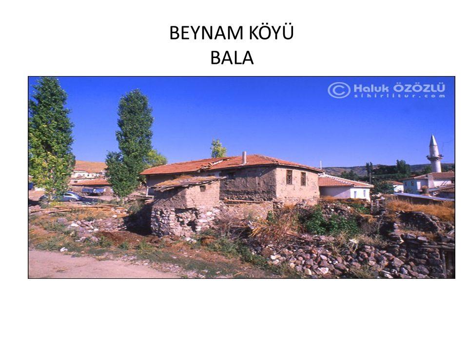 BEYNAM KÖYÜ BALA